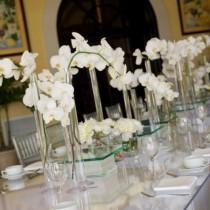 tavola-chic-con-orchidee-bianche
